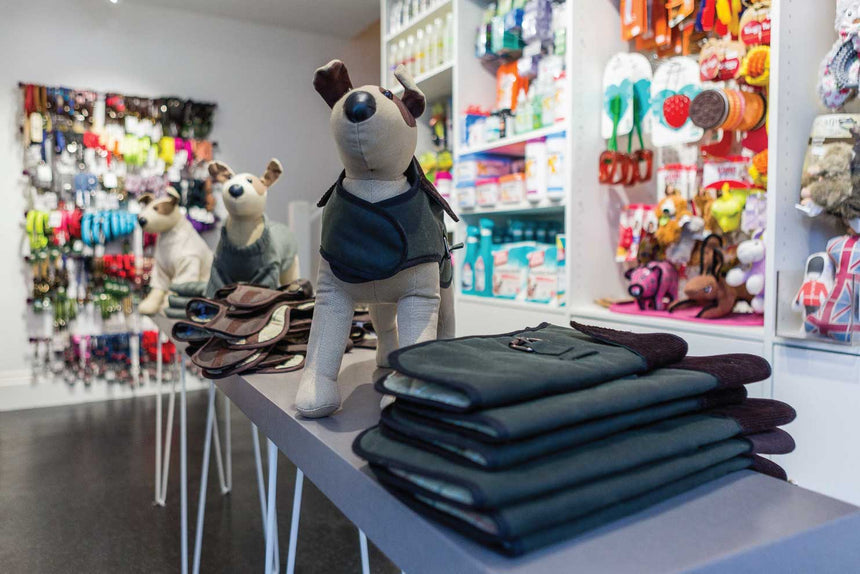 Dog Boutiques & Why We Think You will Love Our London dog shops