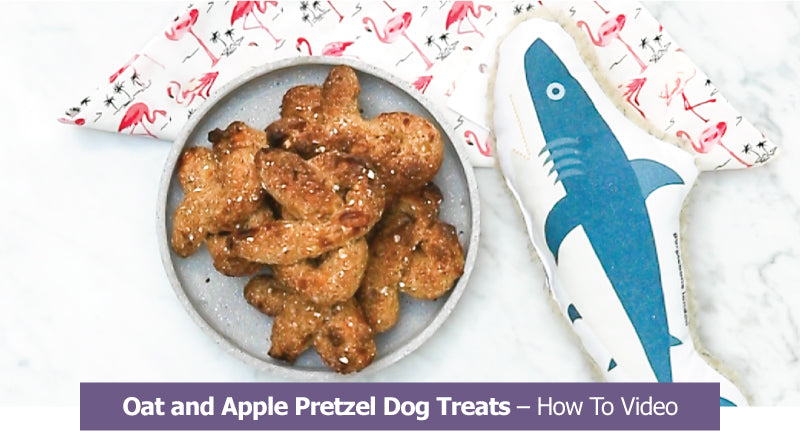 Oat and Apple Pretzel Dog Treats - How To Video