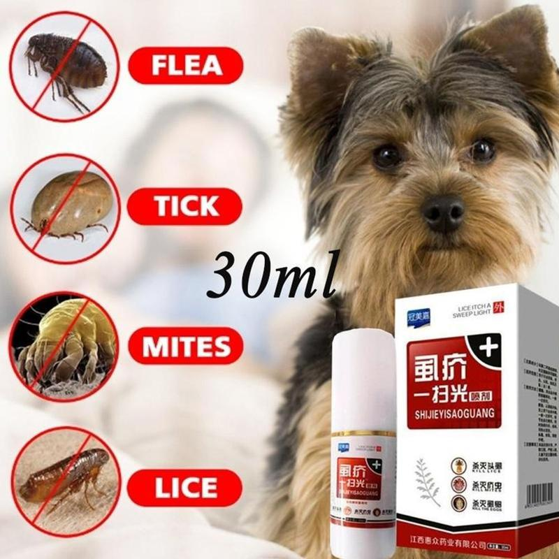 Pet Fleas Treatment