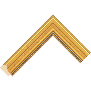 Gold picture frame with decorative edge