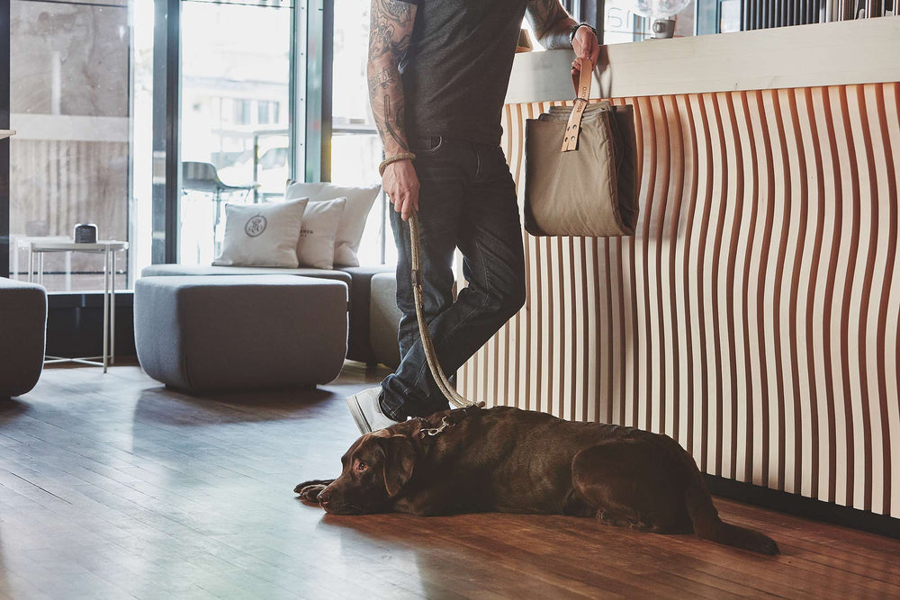 MiaCara Cosmo travelBed Mineral Taupe Mobiles Hundebett