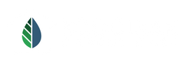 EcoClean Carpet Care