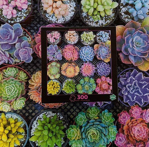 Succulents Jigsaw1000 PCS