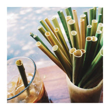 Load image into Gallery viewer, Grass Drinking Straws Grasst.com GRASS STRAWS are Single Use, Zero- Waste, Eco-Friendly, Compostable. Go Grass!!!  Fair Trade - Natural - Renewable - Biodegradable - Non-Toxic   Plastic Straws Pollute & take 200 years to decompose