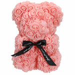 Teddy Bear Rose Flower