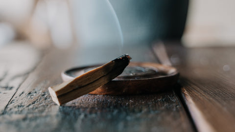 Palo Santo: The Holy Wood that Gets Better with Age I DharmaCrafts