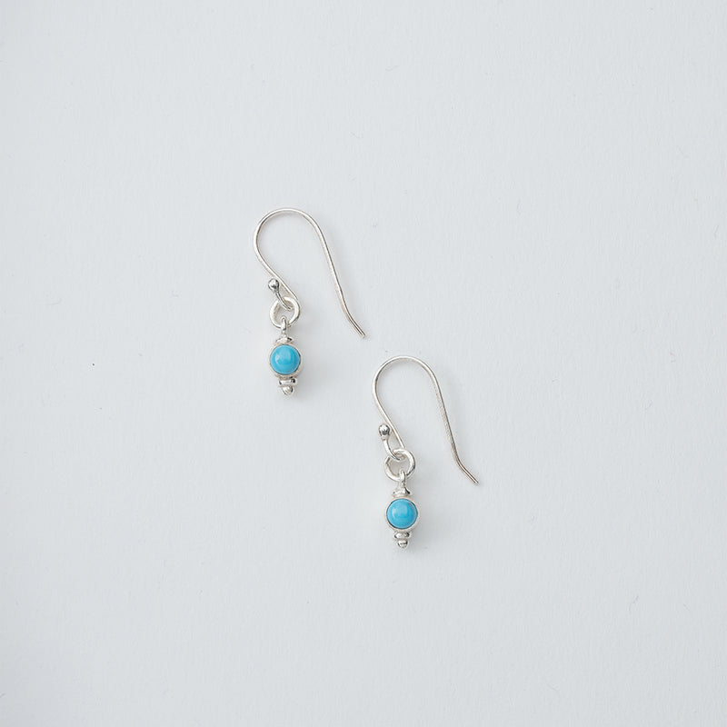 Small Turquoise Stone Dangle Earrings