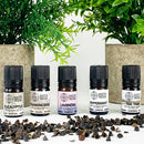Organic Essential Oils Mini Set