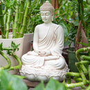 Buddha On Lotus Throne Statue