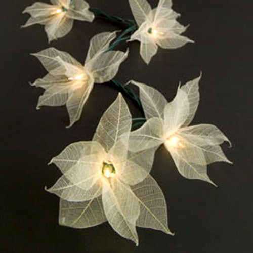 Bodhi Leaf Look-a-Lights