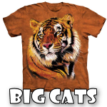 Big Cats Designs