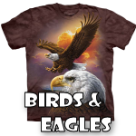 Eagles & Other Bird Designs