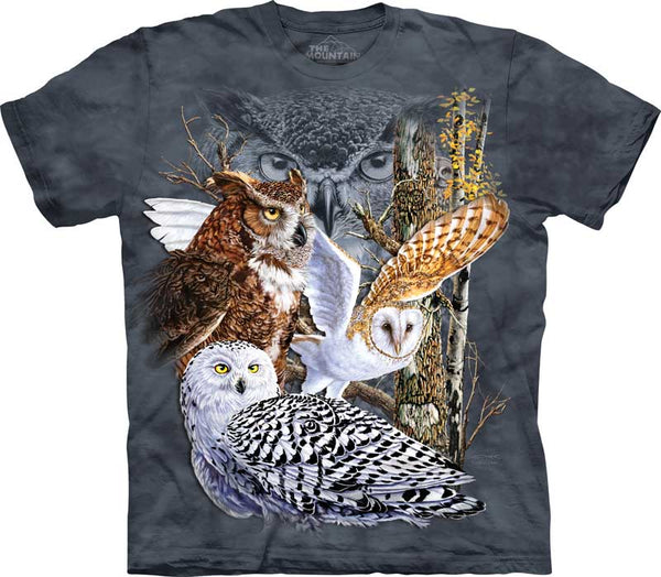 Find 11 Owls Adults T-Shirt
