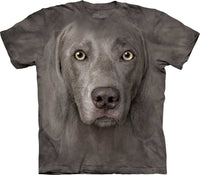 Weimaraner Dog Face Adults T-Shirt