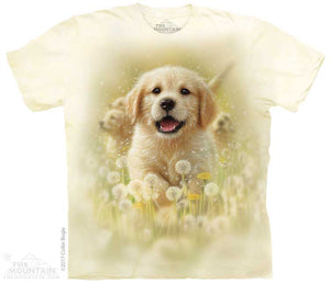 Golden Puppy Adults T-Shirt