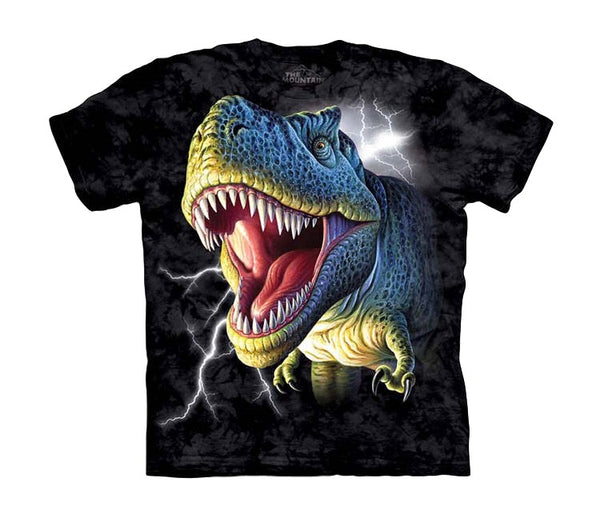 Lightning Rex Childrens Dinosaur T-Shirt