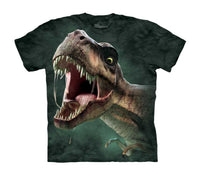 T-Rex Roar Childrens Dinosaur T-Shirt