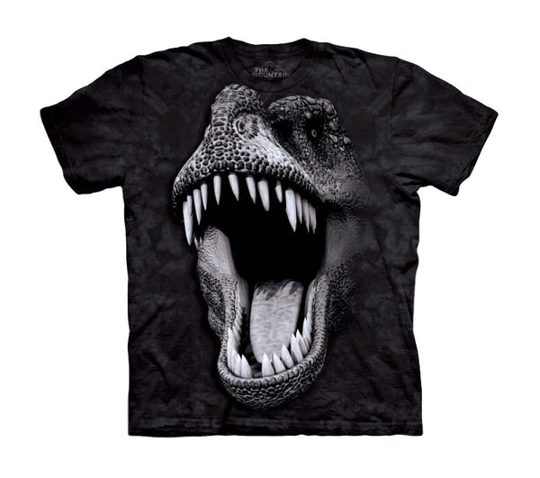 Big Face Rex Childrens Dinosaur T-Shirt (Non-Glow)