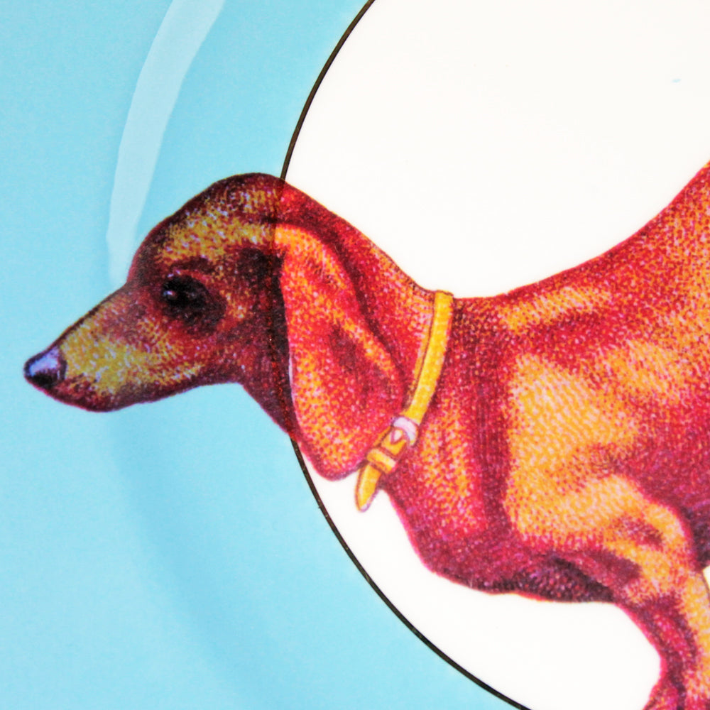 Load image into Gallery viewer, Vintage Sausage Doggie Cake Plate