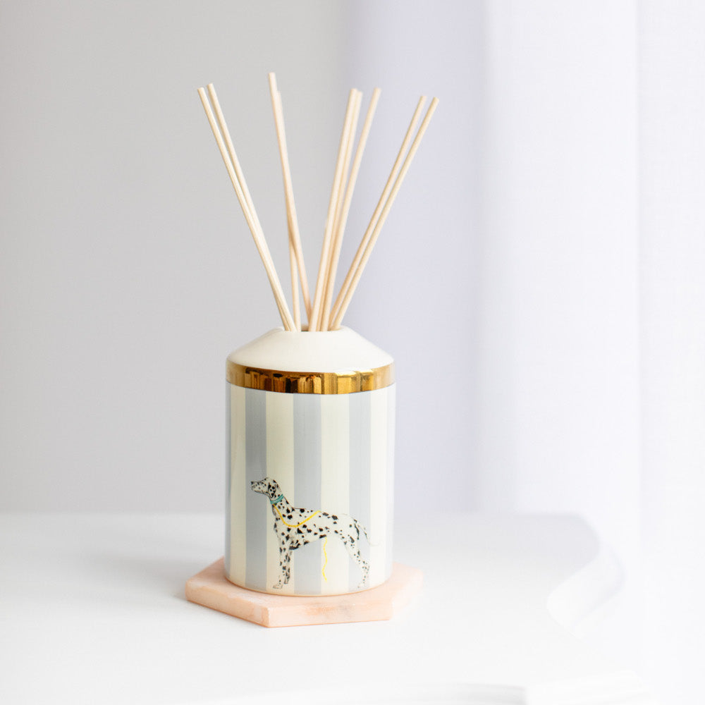 Load image into Gallery viewer, Rock Your Spots Off reed diffuser