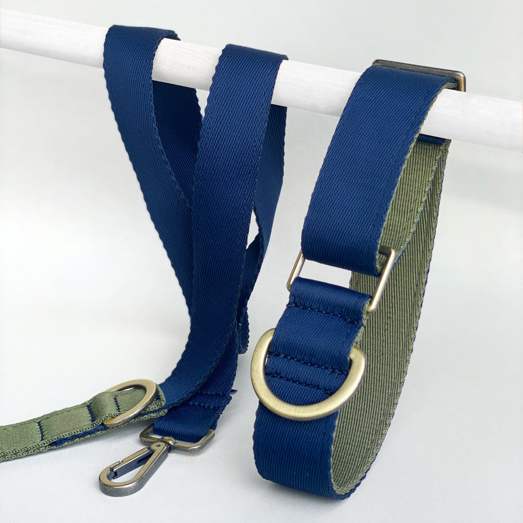Blue lime- Set collar y correa - Il Can Atelier