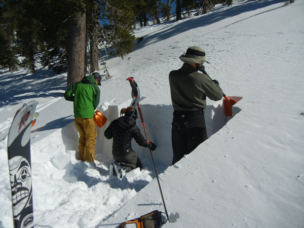 Students dig a snow pit during an AIARE 1 avalanche course