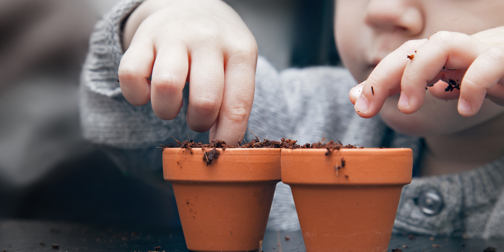 How to get kids into sustainability