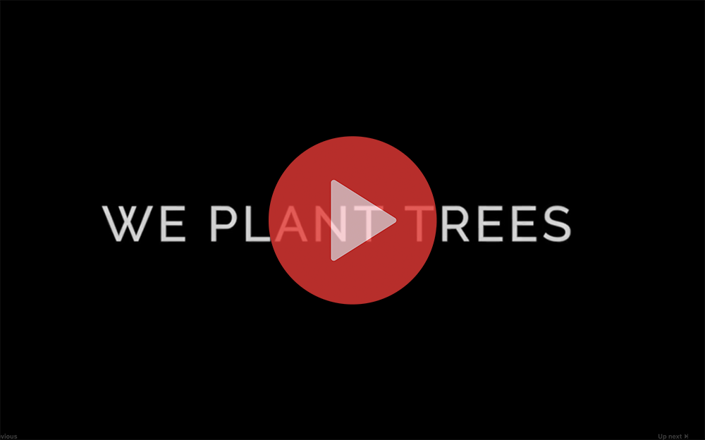 Green Island Co - Plant a tree each order over £10