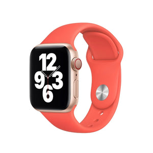 Apple 40MM Watch Band