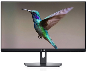 "Dell 24"" FHD IPS Monitor : SE2419HR"