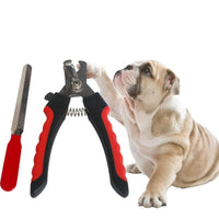 DIDIHOU 1 Set  Pet Grooming Tools Stainless Steel Nail Clippers Dogs Cats Nail Scissor Nail Cutter Puppy Kitten Grooming|Cat Grooming