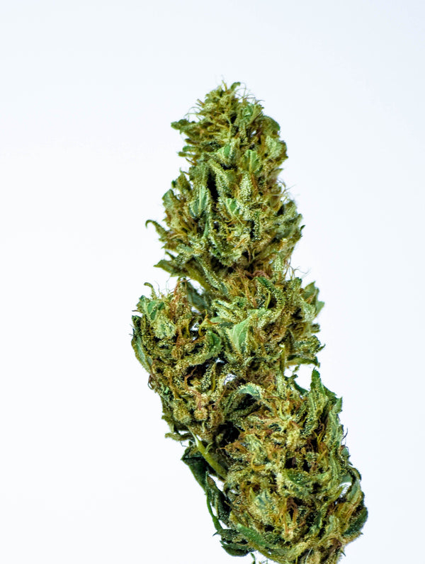 Dopemary's Electra Hemp Flower- Organic - Dopemary