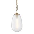 1 LIGHT LARGE PENDANT 2109