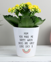 Load image into Gallery viewer, Personalised Rainbow Plant Pot