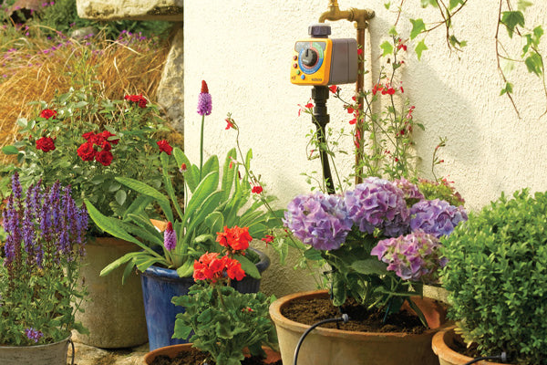 Hozelock Automatic Watering Systems Guide