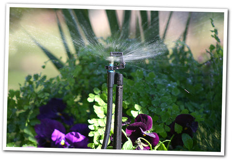 Mini Sprinkler Systems