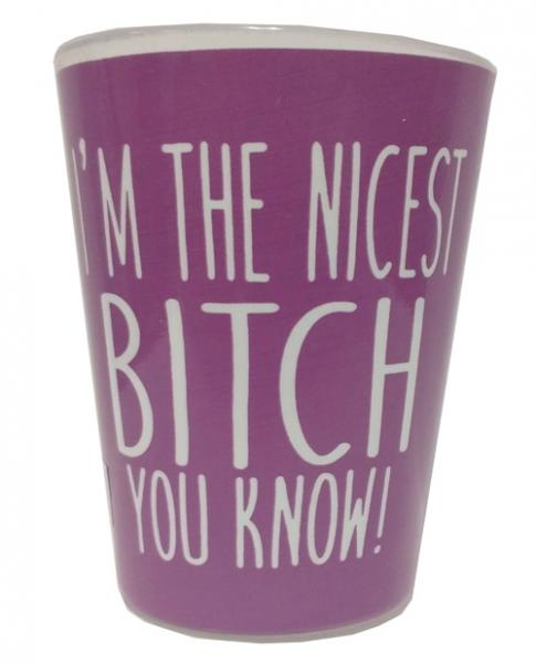 I'm The Nicest Bitch You Know Shot Glass