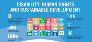 Next World Session:  Models of Disability & UN Sustainable Development Goals