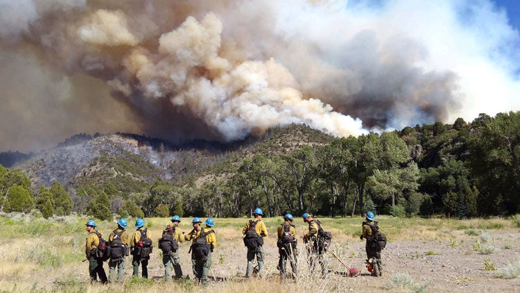 Wildland Firefighters Gear and Fire Safety
