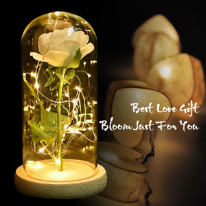Red / White / Black Eternal Rose Flower in Glass Dome with LED Light Wooden Base gifts for women Mother's Day Gifts
