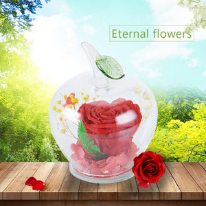 Immortal Flowers In Apple-shaped Glass Dome