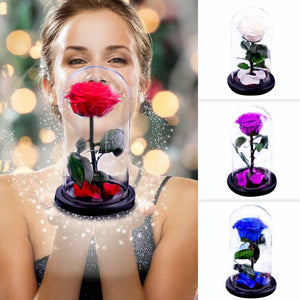 New Rose Flower Beauty and The Beast Eternal Rose with Glass Dome