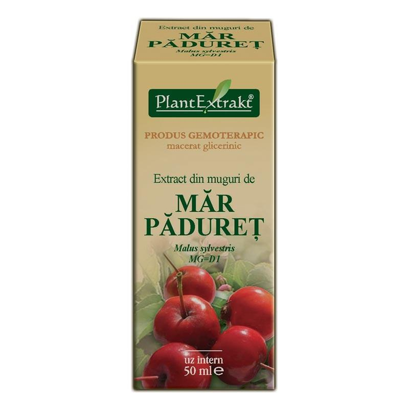 Extract din muguri de Mar Paduret, PlantExtrakt, 50ml 0