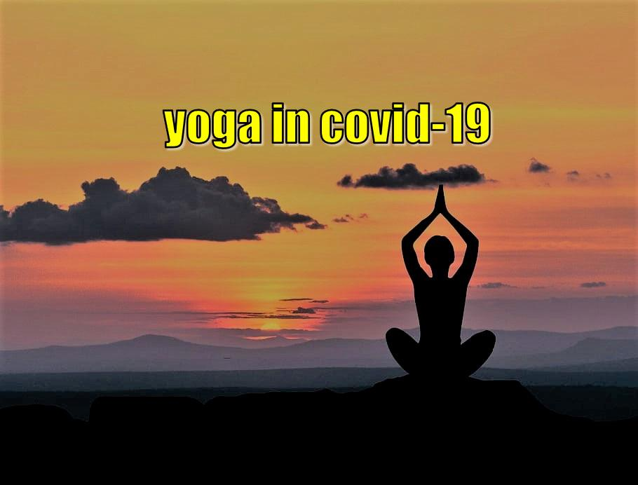 Surge in popularity for Yoga in Covid-19