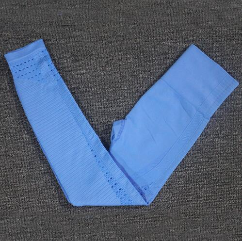 Hollow-Out Seamless Sports Leggings workoutleggings leggings A Blue Large
