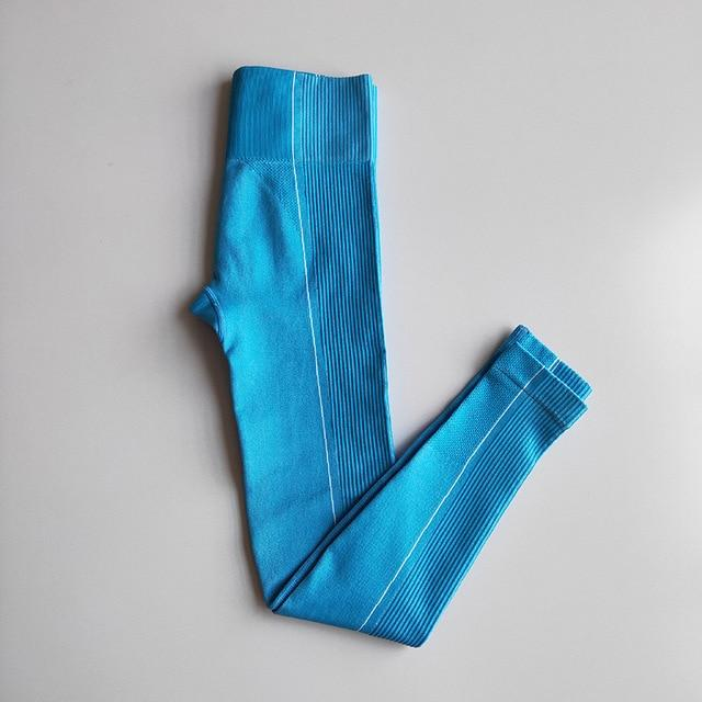 Ultra Seamless Yoga Leggings workoutleggings Blue Small