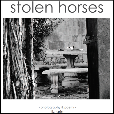 Stolen Horses - Photography & Poetry Book by Liz Larin