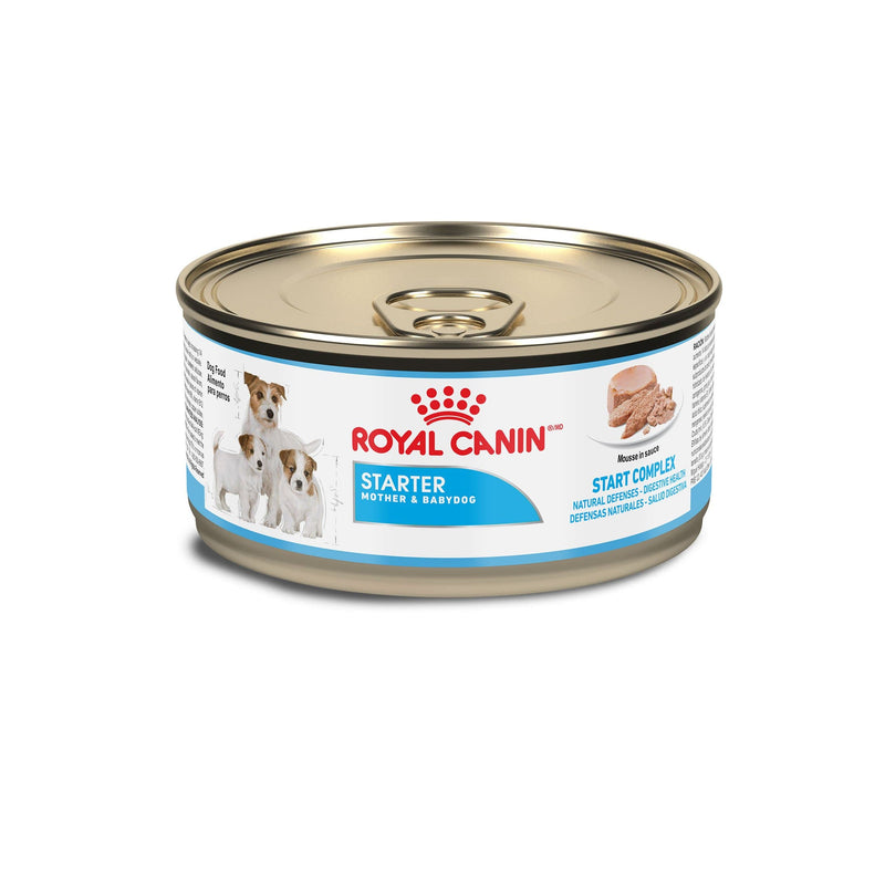 Royal Canin Starter Mousse Lata 0.165Kg - Alimento Húmedo Perras Gestantes y Cachorros