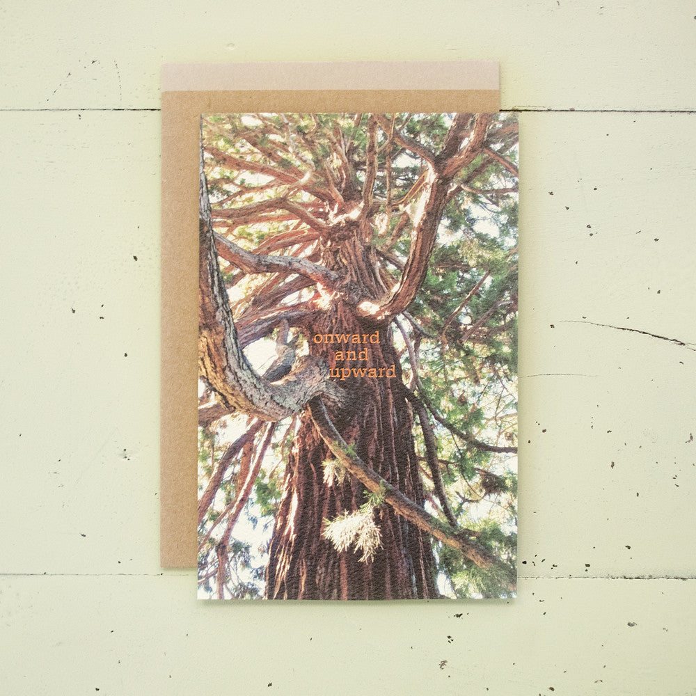 Onward & Upward Tree Foil Text Card