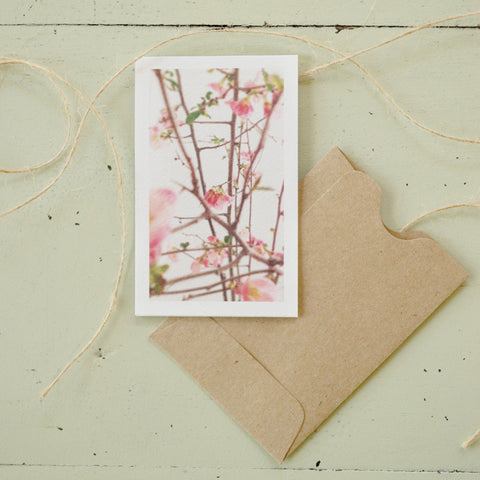 Flowering Branches Enclosure Card